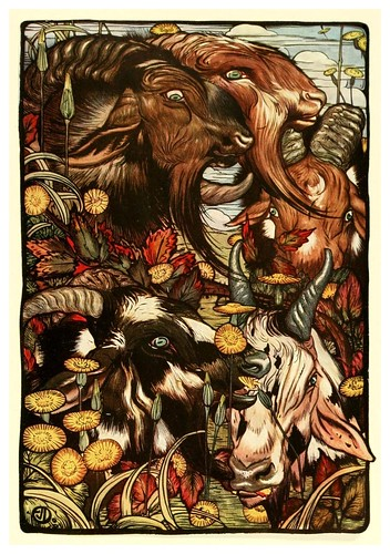004-La cabra y sus barbas-The fables of Aesop 1909-Edward Detmold