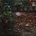 il cortile della Filo.1 by settima_via