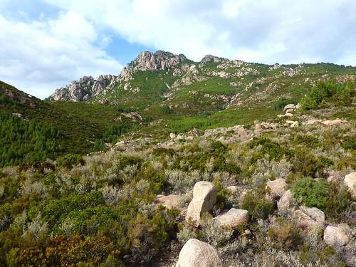 Canyon du Niffru : le plateau de Niffru vers le ruisseau et la pointe 1059m