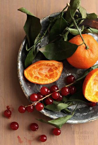 tangerine 4