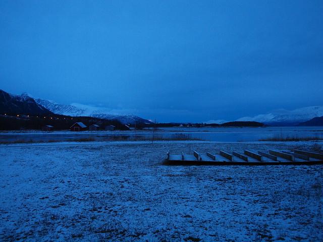 Blue Polar Night