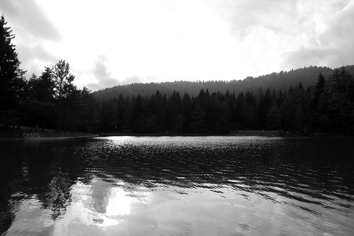sky bw lake tree nature water slovenia rakitna