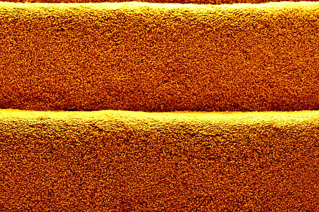 carpeted stair