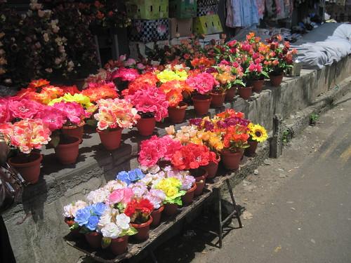 Flowers for Sale in Chemin Grenier