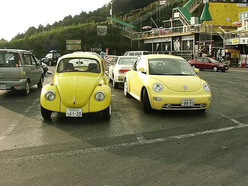 Yellow Beetles