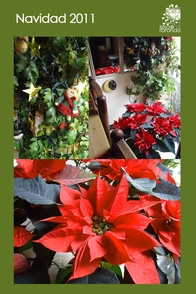 Navidad 2011 copia