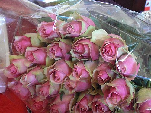 belles roses.jpg