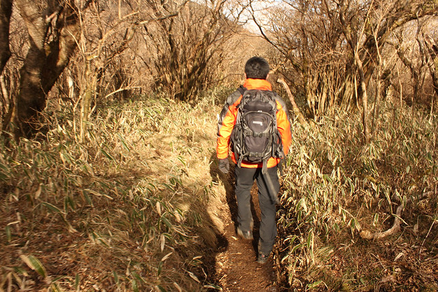 駒ヶ岳下山