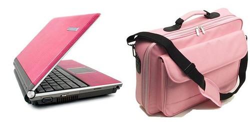 informatica-en-rosa