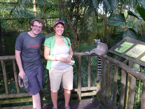 Col and Lol and ring-tailed lemur