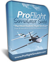 Buy pro flight simulator