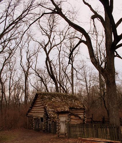 Cooper's Cabin