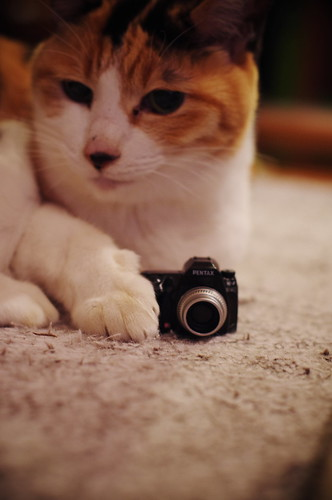 This is my camera.