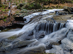 Double Run Nature Trail (2)