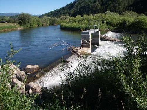 Reconnecting Habitat on Wyoming's Salt River