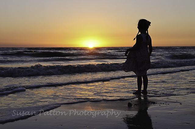 wAllie_silhouee_sunset