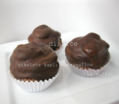 çikolata kaplı marshmallow ve muffin