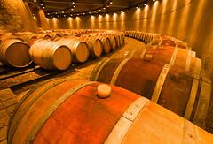 La arquitectura del vino