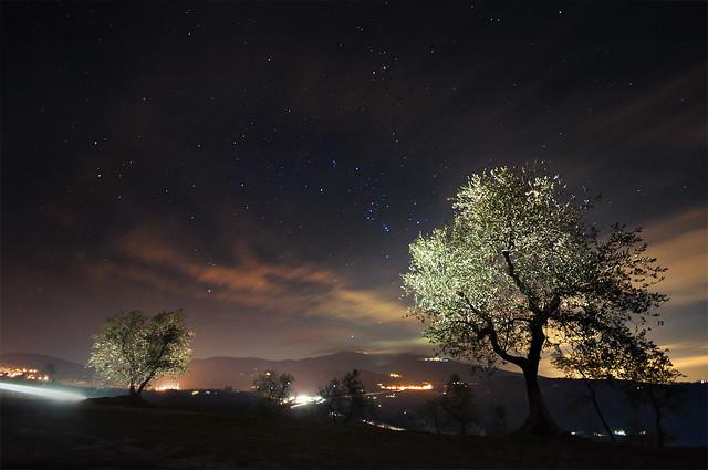 Nightscape 2
