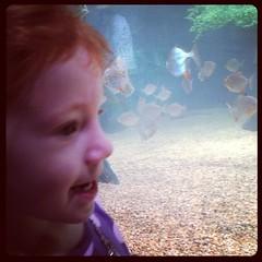 Cleveland aquarium!! #happyincle #clevelandaruarium #clevelans