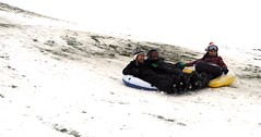 winter sport(0.0), vehicle(0.0), snowboard(0.0), extreme sport(0.0), tubing(1.0), sports(1.0), snow(1.0), sledding(1.0), sled(1.0),
