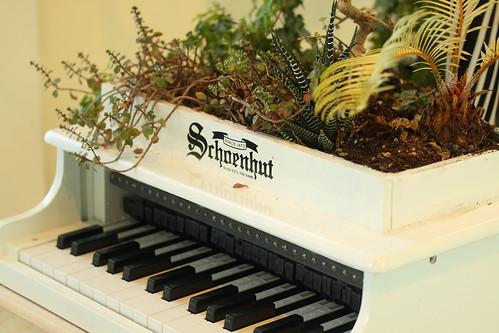 Plant Piano