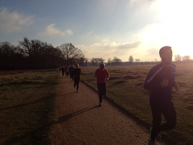 Park runners, Richmond Park