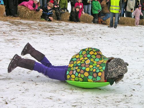 speeding turtle