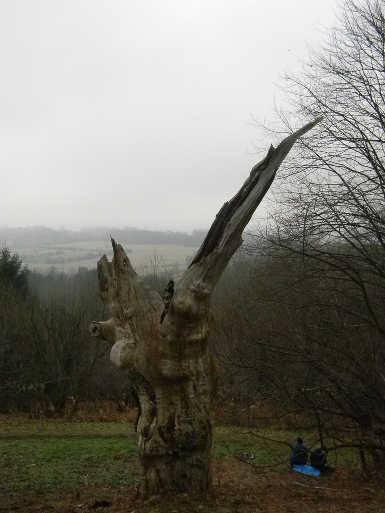 View with stump Hayes to Knockholt
