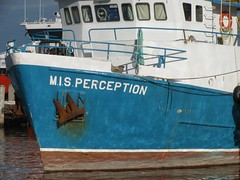 M.I.S. Perception