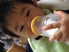 今日の片手哺乳瓶飲みとらちゃん(2012/1/31)