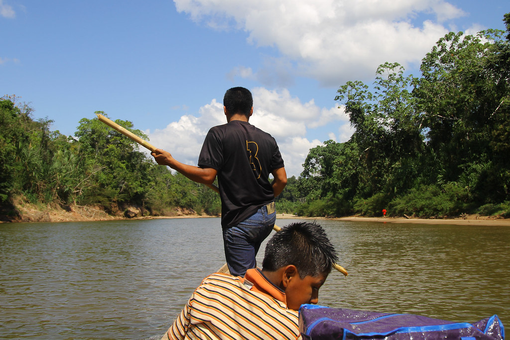 Navegando el río Sepa