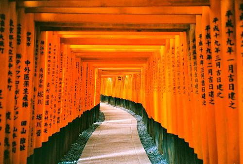 無料写真素材, 建築物・町並み, 宗教施設, 神社・鳥居, 神道, 風景  日本