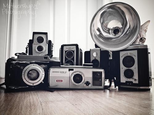 I heart Kodak