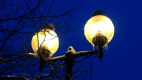 frozenlights