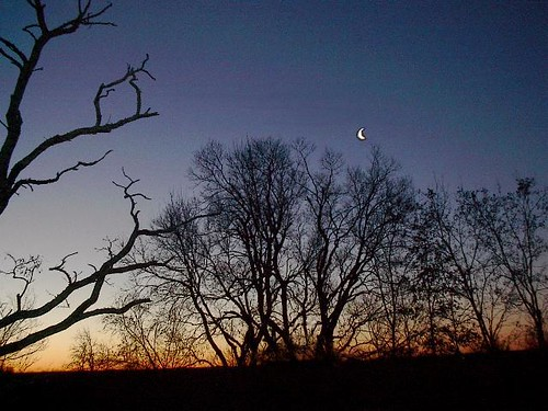 january-crescent-moon-sunrise by Marti_L