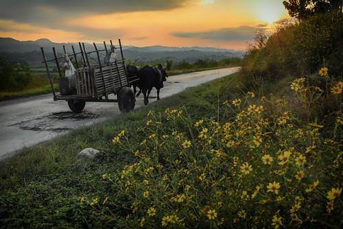 Slow road by Rey Cuba
