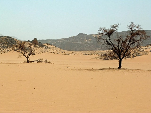 Karkur Tahl en Jebel Uweinat (Desierto Líbico, Egipto)