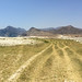 The beach at Al Mughsail IMG_1097