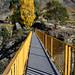 Crossing the Golden Bridge by Jocey K