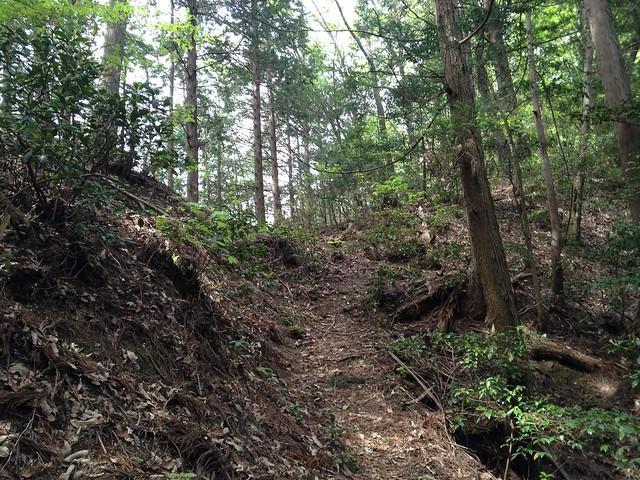 相戸岳 西ルート 登山道 稜線