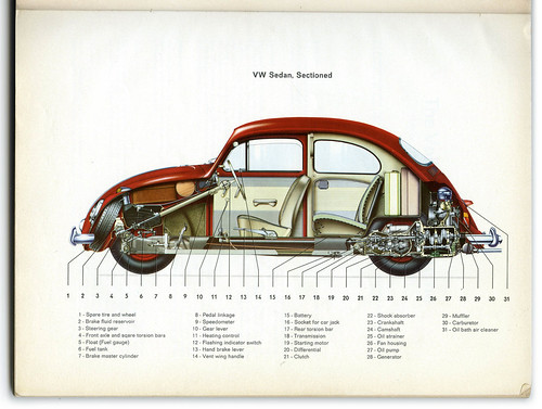 Beetle cut away