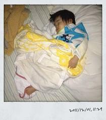 午前のお昼寝。寝ました。(2011/12/1)