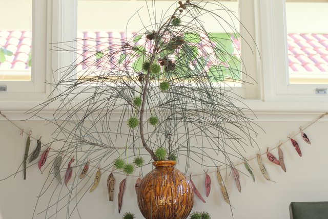 Our natural free foraged christmas tree and leaf advent calendar