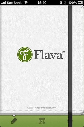flava1-1