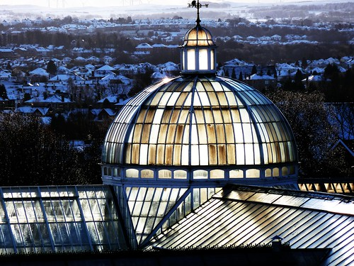 Glasshouses at Queens Park