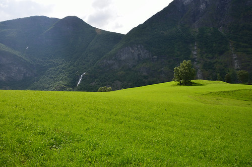 Grass, tree, mountains and waterfall