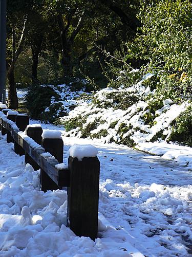 poteaux enneigés à Central Park.jpg