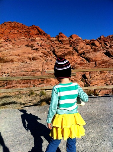 Avant garde fashion at Red Rock Canyon. Las Vegas.