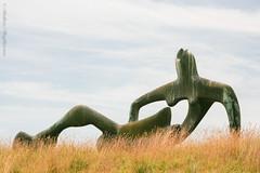 Reclining Figure, Sheep Field, Henry Moore Foundation